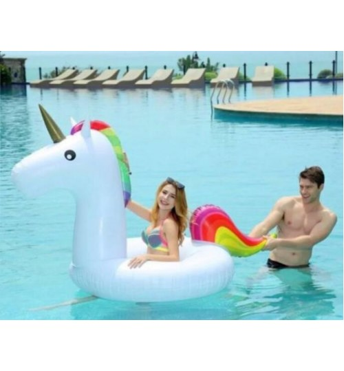 Inflatable Pool Float -120 M