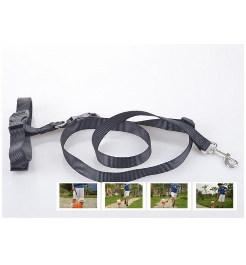 Dog lead Dog Leash Running Leash